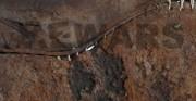 but ażurowy z ostrogą - późne średniowiecze, skóra archeologiczna, metal [na zdjęciach stan po konserwacji i restauracji]