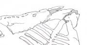 but ażurowy - późne średniowiecze, skóra archeologiczna [przerys skórzanych elementów buta po konserwacji, przed formowaniem; zaznaczone silnie zniszczone partie skóry]