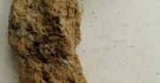 fragment podkowy - obiekt archeologiczny [po lewej stan przed konserwacją, po prawej stan po konserwacji]