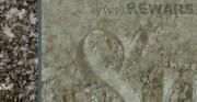 lico płyty nagrobnej z cmentarza żydowskiego - fragment inskrypcji [po lewej stan przed konserwacją - widoczne porosty, po prawej stan po konserwacji]