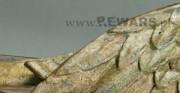 Krucyfiks Serafiński - 2 poł. XIV wieku; pełnoplastyczna rzeźba drewniana, polichromowana [stan po konserwacji, widoczna rekonstrukcja warstwy malarskiej - uzupełnienie kropką]