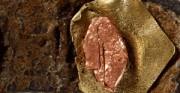 fragment paska z metalowymi elementami - skóra archeologiczna [po lewej stan przed konserwacją, po prawej stan po konserwacji]